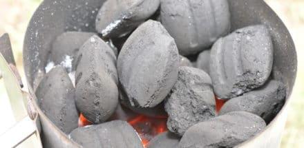 Zarter Rehrücken im Speckmantel mit Rosmarin-Wacholder geräuchert - weber grillbriketts test 07 - 8