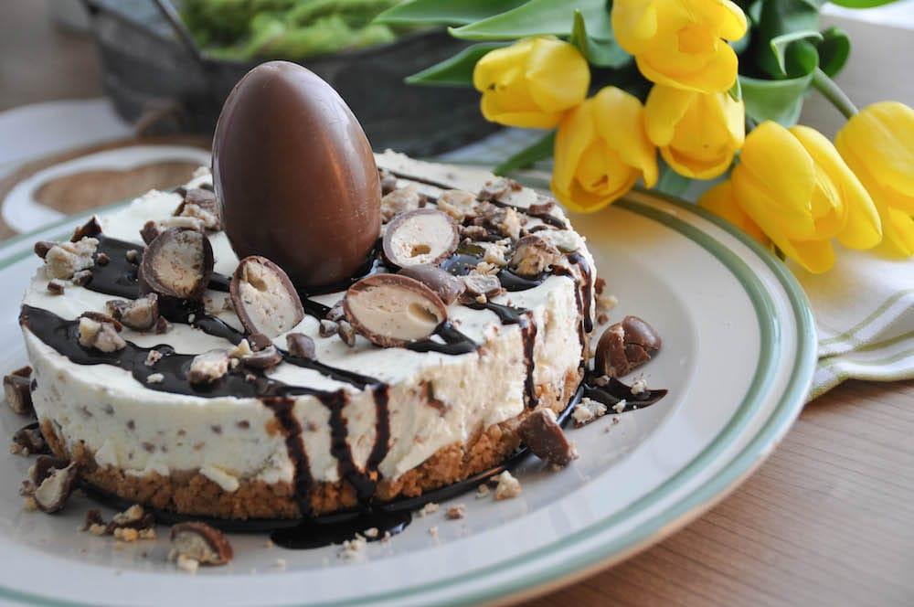 Schokoliere Cheesecake - die no bake cake