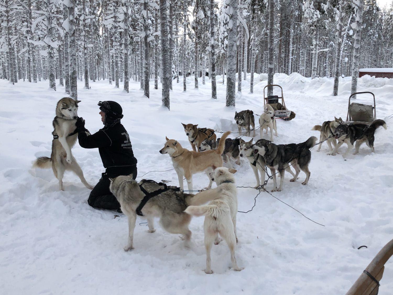 Extreme BBQ in der Wildnis von Lappland - Lappland 080 e1517254495965 - 62