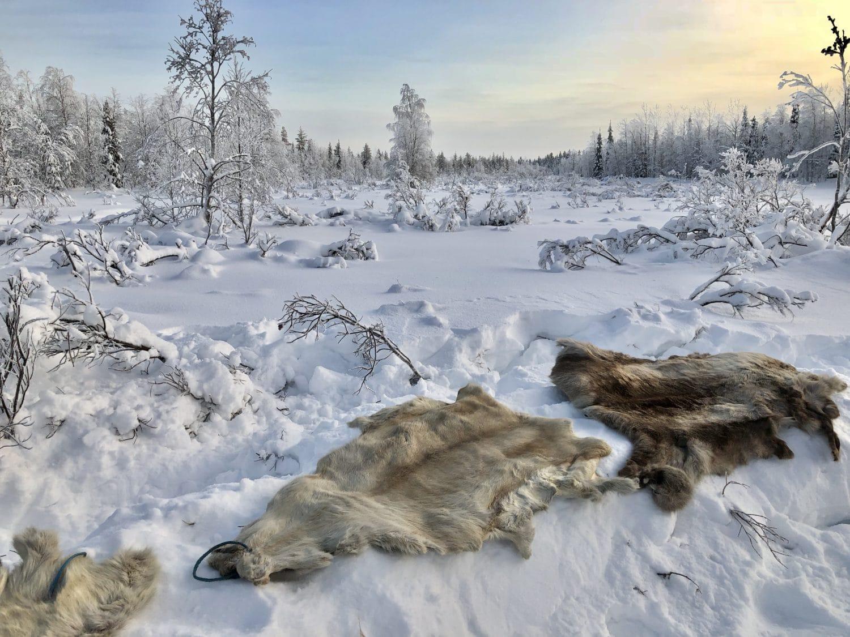 Extreme BBQ in der Wildnis Lapplands - Lappland 090 - 92