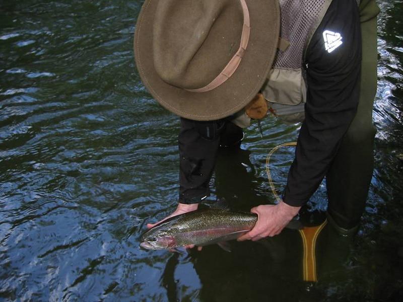 In der Mattig fischen