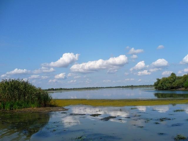 Donaudelta Impressionen