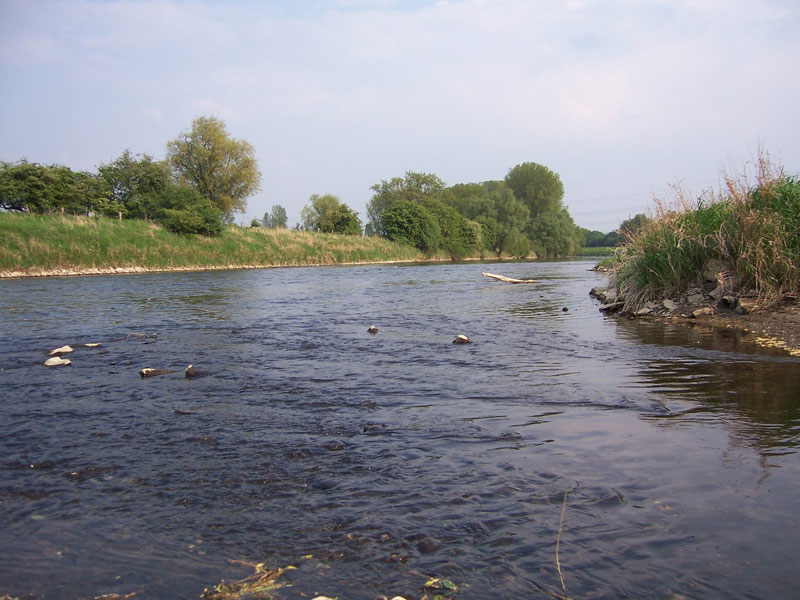 Angeln im Fluss Lippe