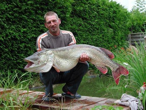 Erfolgreich fischen am Hechtsee