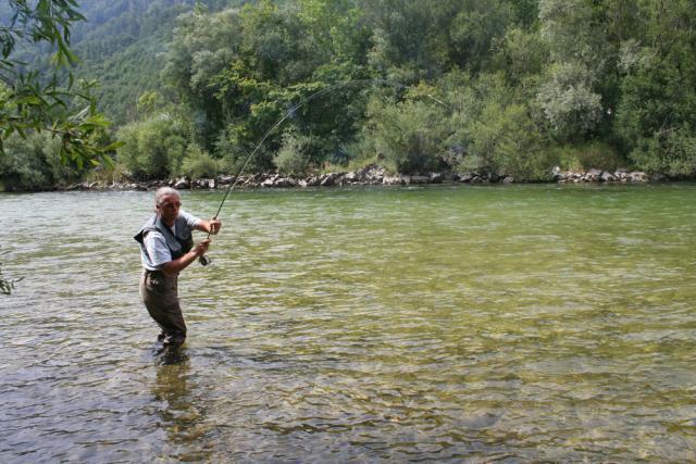 Ebenseer Traun fischen