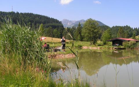 Bichlacher Angelteiche fischen