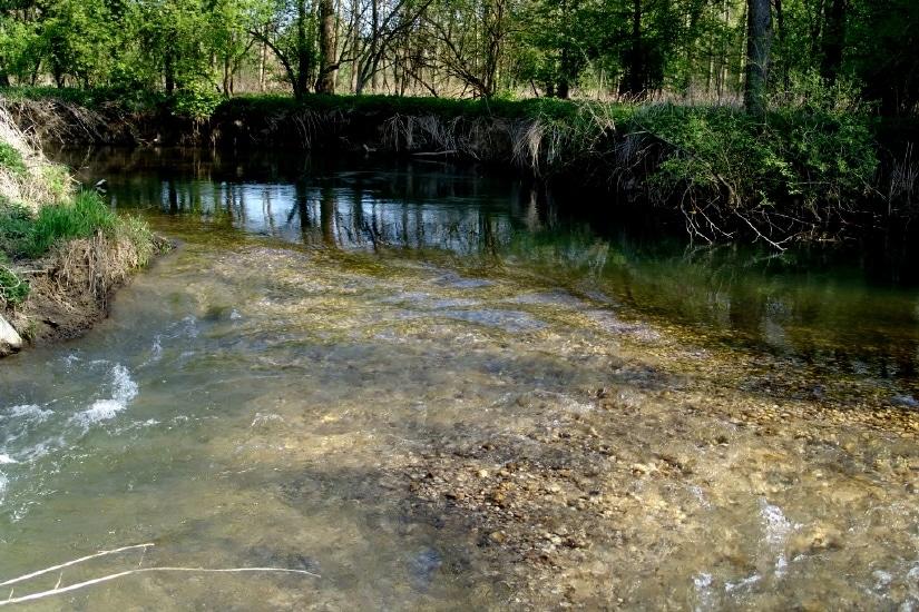 Krems - Mündung in die Traun