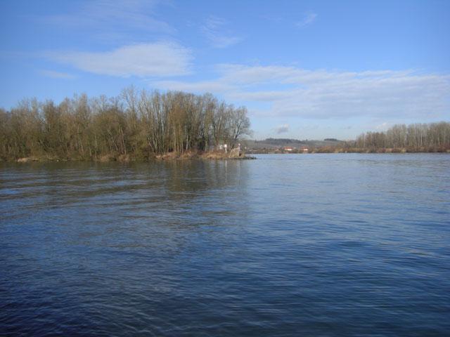 Angeln am Donau Schwandlwasser