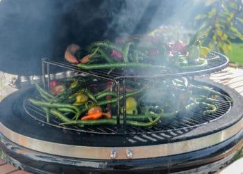Chilis räuchern & trocknen im Smoker - chilis trocknen 06 2 - 15