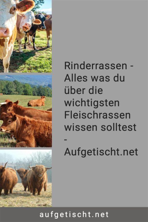 Rinderrassen - Alles was du über die wichtigsten Fleischrassen wissen solltest